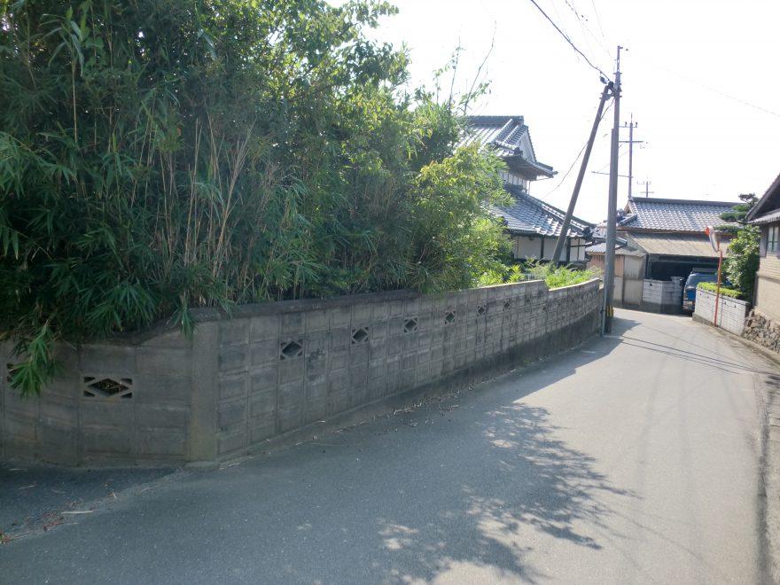 写真① 勝浦2992